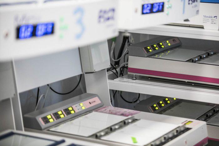 Embryonenkultur im Labor und PGT-A