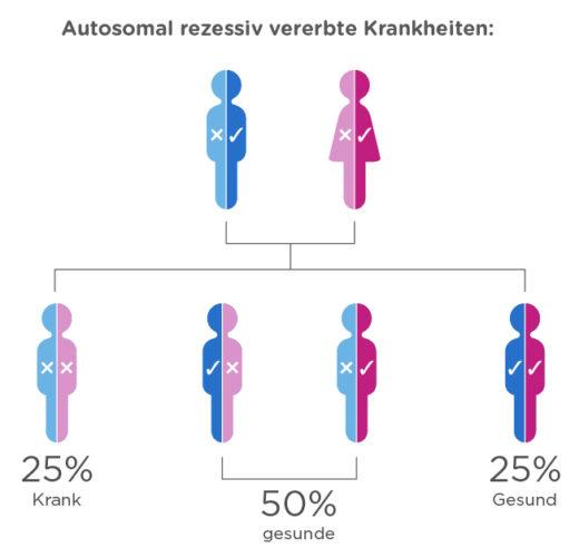 Was geschieht, wenn wir beide Träger der gleichen Mutation sind?