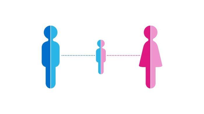 Was ist der GeneSeeker: Genetischer Kompatibilitätstest und welchen Nutzen bringt er?