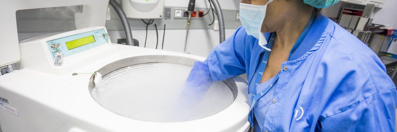Eizellen einfrieren: Ablauf, Kosten & Risiken