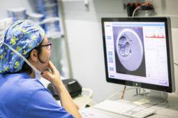 Wie unterscheiden sich ICSI und IVF?