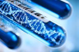 Reproduktionsgenetik