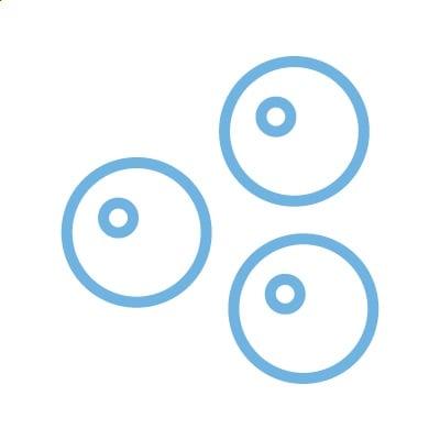 Akkumulation von Eizellen