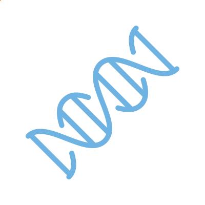 Genetische Präimplantationsdiagnostik (PGT-A):